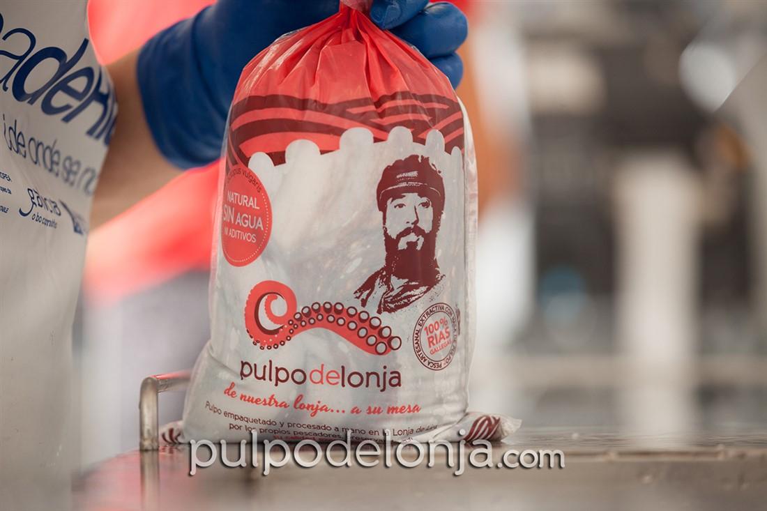 Pulpo de Lonja, pulpo de Galicia